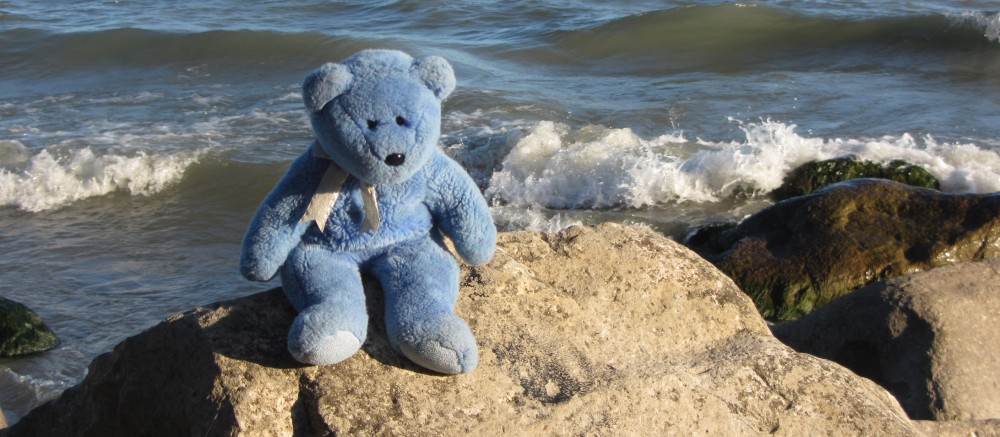 The Adventures of Blue Bear