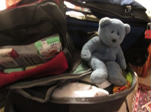 Bear with suitcases