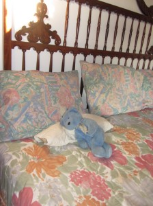 Blue Bear in bed