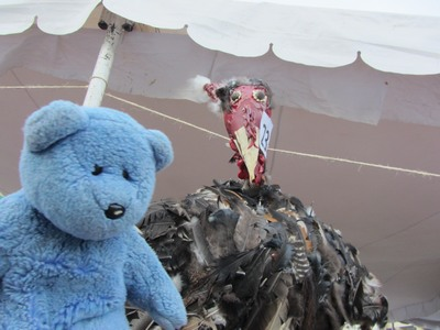 Blue Bear & Turkey pinata