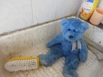 Blue Bear takes a bath