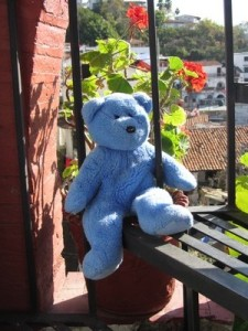 Blue Bear on stairs