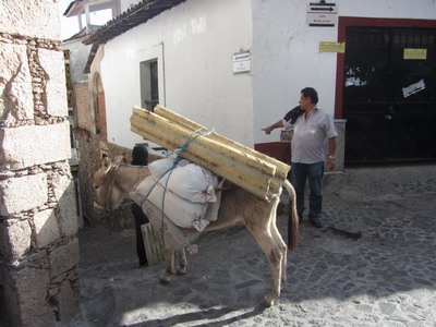 Delivery by mule., Taxco, Mexico