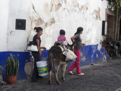 mule with child, Taxco, Mexico