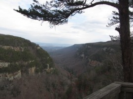 Cloudland Canyon State Park, Georgia