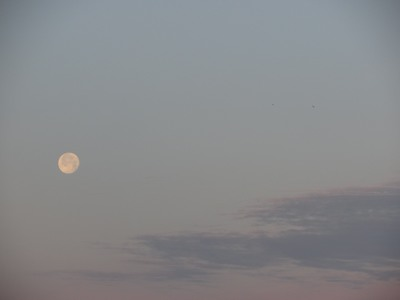 Moonset, Cocoa Beach, Florida