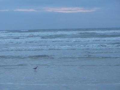 Sunrise, New Smyrna Beach, Florida