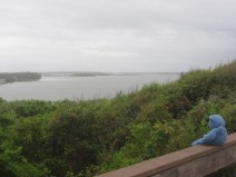 View of Mosquito Lagoon, Canaveral National Seashore