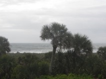 Ocean view, Canaveral National Seashore