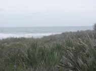 Landscape, Canaveral National Seashore