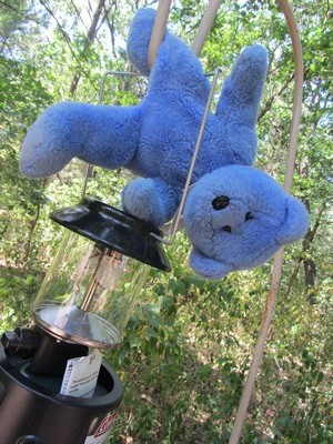 Blue Bear hanging from a lantern