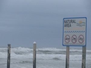 No traffic beach area, New Smyrna Beach , Florida