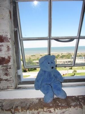 Blue Bear at window of Tybee Island light, Georgia