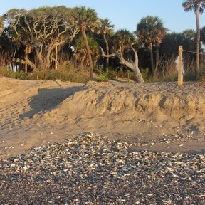 Edisto Beach, Georgia