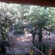 Courtyard, Family compound, Ocotito, Mexico