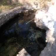 The springs at Buena Vista, Mexico