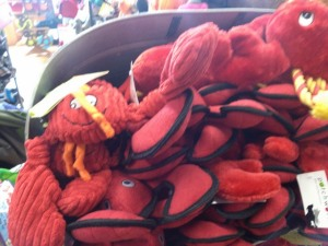 Lobster toys, Portland, Maine
