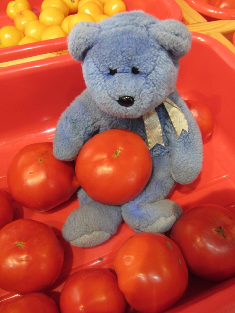 Blue Bear and tomatoes