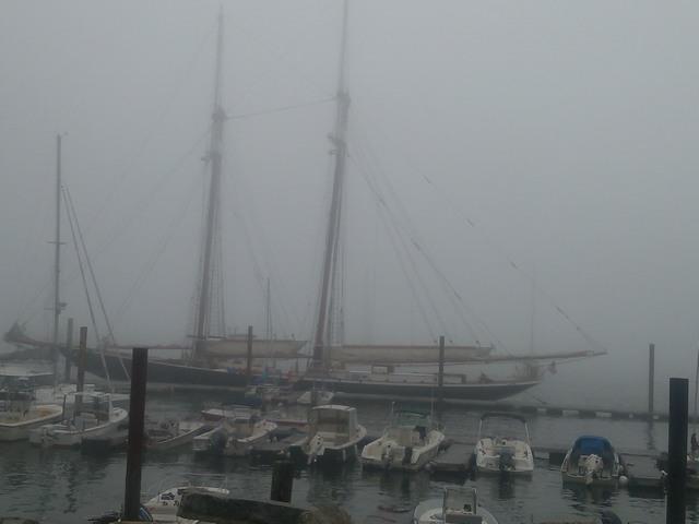 Tall Ships, Portland harbor (Maine)