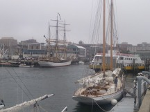 Tall Ships, Portland harbor (Maine)