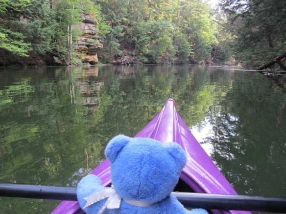 Blue Bear paddling at Mirror Lake