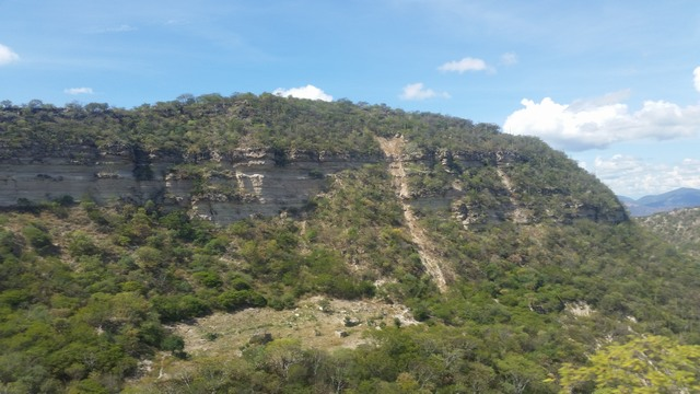 Mexican bluff
