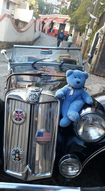 Blue Bear and MG in Mexico