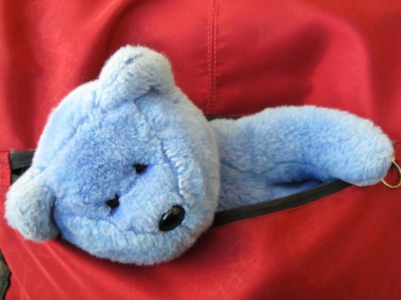 Blue Bear in Red
